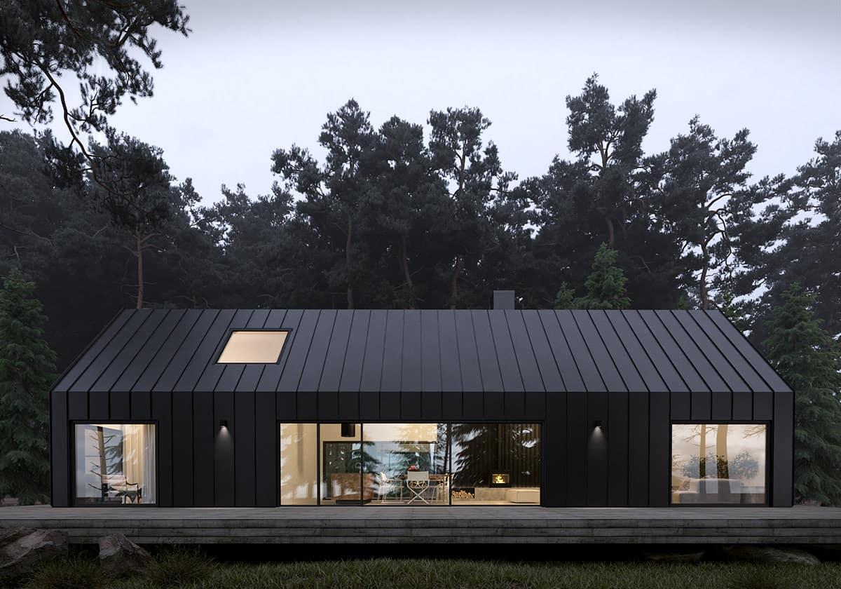 best modern exterior color trends 2021 black matte Scandinavian style house design