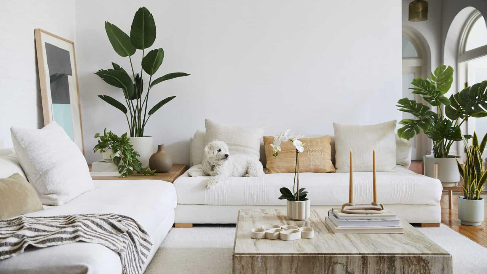 modern home design ideas 2021 greenery and houseplants
