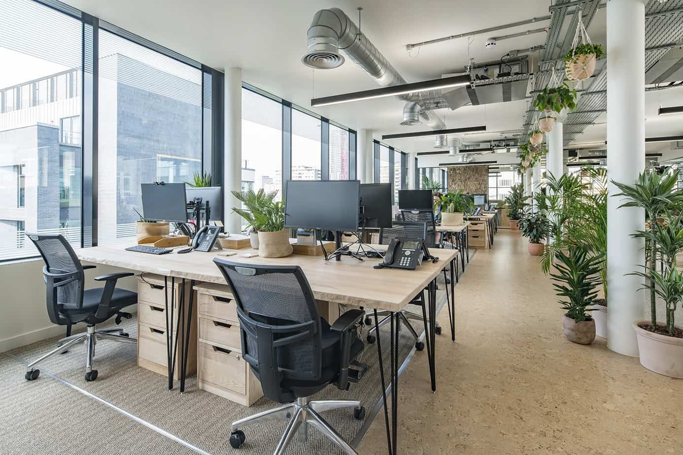 office trends 2021 natural plants