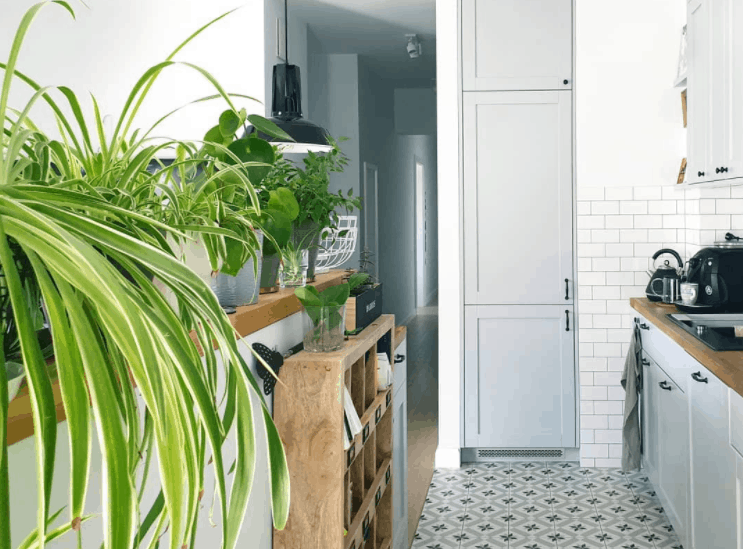 Small Kitchen Ideas 2022 Upper Cabinet As a Flower Stand