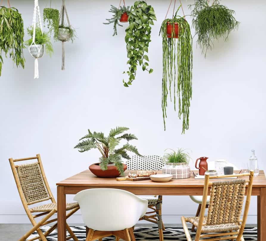 Dining Room Trends 2022: Decorative Plates