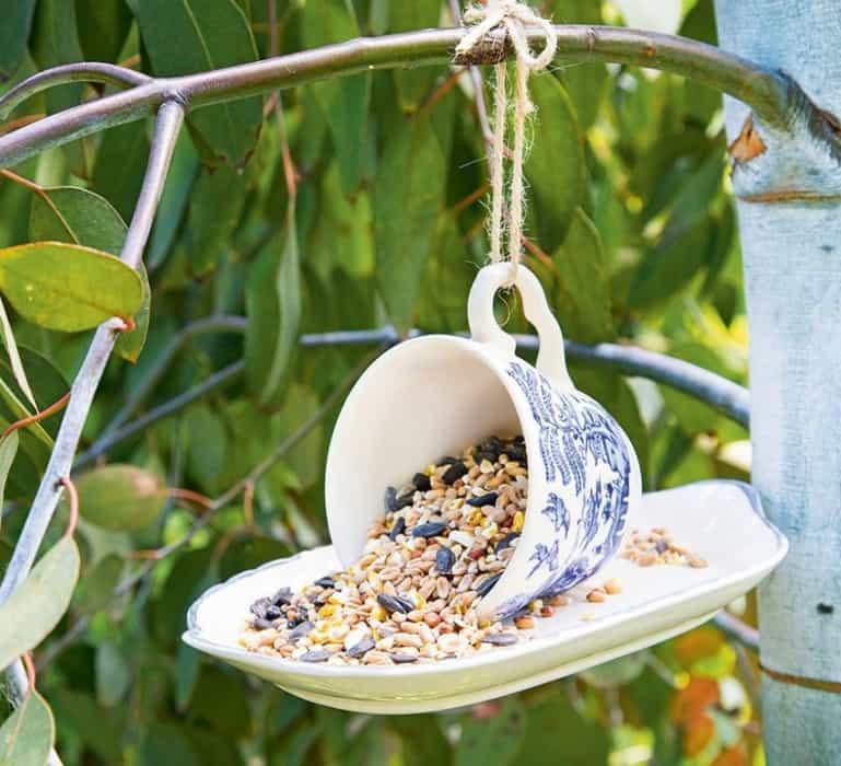 Garden Ideas 2022