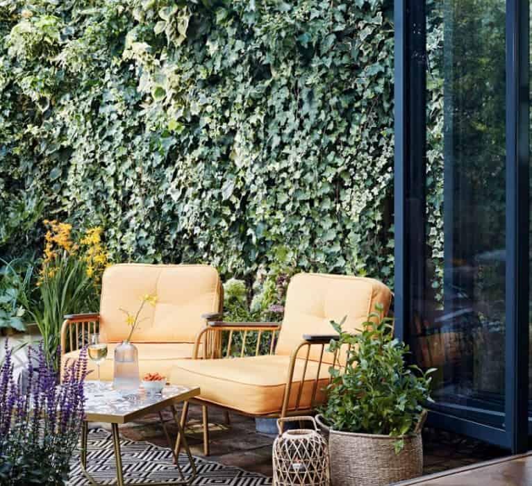 2022 Landscaping Ideas: Vertical Gardening